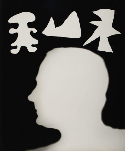 Tracey Stephens Design Logo